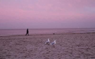 Ab ans Meer: Mein Tagesausflug an die Ostsee
